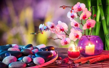 flowers, candles, stones, cinnamon, bamboo, spa, orchids