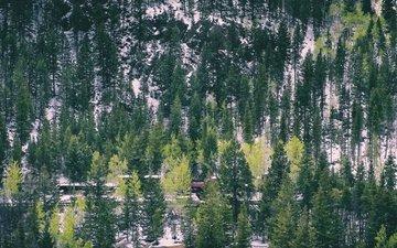 деревья, горы, снег, железная дорога, холм