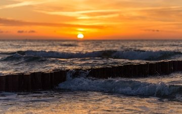 wave, sunset, sea, surf