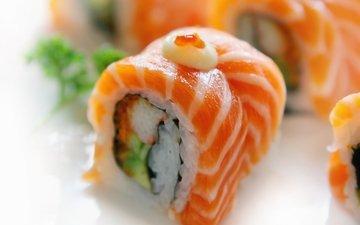 рыба, рис, суши, морепродукты, японская кухня, крупным планом