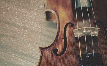 скрипка, музыка, струны, музыкальный инструмент