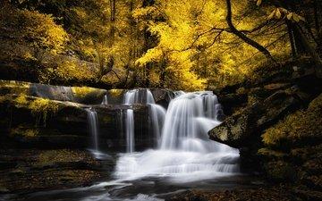 река, лес, водопад, осень, поток, каскад