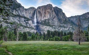деревья, горы, пейзаж, водопад, йосемитский национальный парк