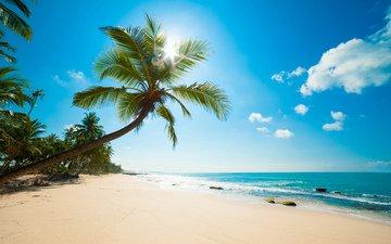 sea, beach, tropics, caribbean