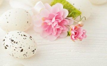 пасха, яйца, камелия