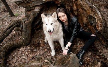 природа, лес, девушка, настроение, собака, аляскинский маламут, станислав губкин