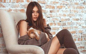 девушка, модель, чулки, кролик, шатенка
