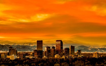 panorama, usa, colorado, skyline, denver
