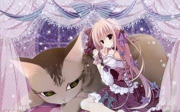 anime, girl, tape, big cat, lolita fashion, anime girl