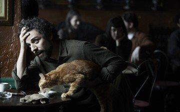 кошка, актёр, фильм, мужчина, рыжий кот, внутри льюина дэвиса, оскар айзек