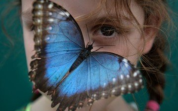 eyes, mood, insect, look, butterfly, wings, girl, face