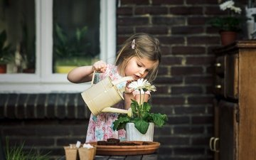 flowers, flower, children, girl, house, barrette, window, pot, lake