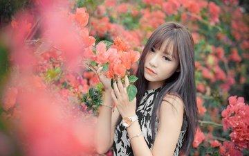 цветы, девушка, часы, волосы, азиатка, боке