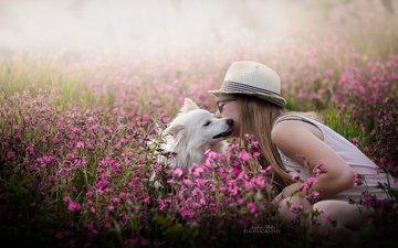 flowers, girl, dog, spring