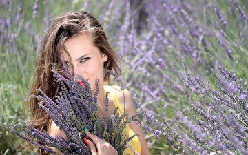 цветы, природа, девушка, лаванда