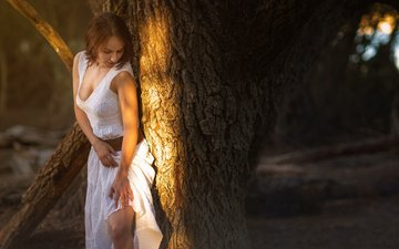 tree, girl, pose, white dress, neckline, sunlight