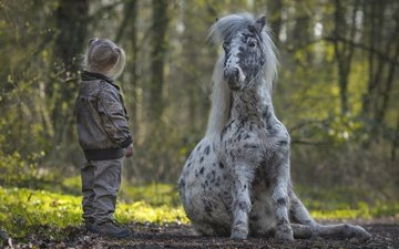 trees, nature, children, girl, pony, mane, horse