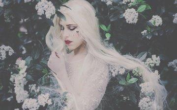 девушка, настроение, кусты, макияж, цветки, длинные волосы, белые волосы