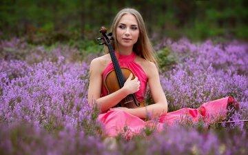 цветы, девушка, настроение, платье, скрипка, вереск