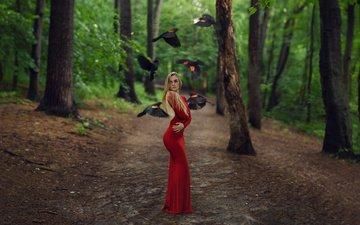 деревья, лес, девушка, блондинка, птицы, креатив, красное платье, длинные волосы