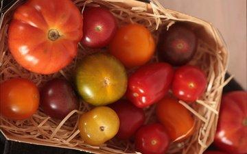 овощи, корзинка, помидоры