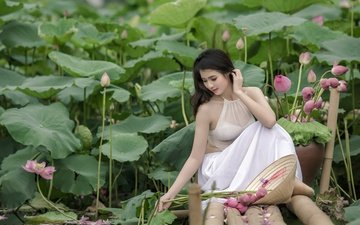 flowers, lake, girl, brunette, summer, asian, lotus