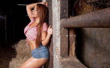 pose, hay, model, makeup, figure, shorts, is, redhead, closed eyes, the wall, topic, anagaviria, jhan carlo, stable