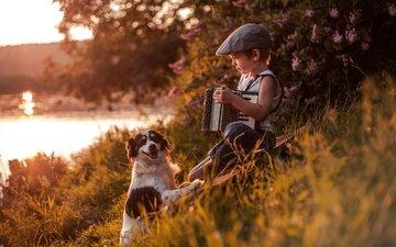 река, собака, мальчик, друзья, кепка, аккордеон