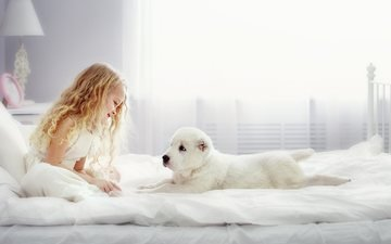 look, dog, girl, puppy, room, animal, bed