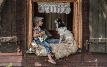 собака, окно, мальчик, друзья, кепка, аккордеон
