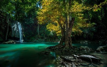 water, tree, stones, waterfall, thailand