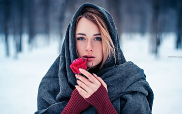 winter, girl, flower, rose, shawl