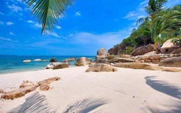 море, пляж, остров, тропики, сейшелы