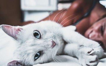 девушка, фон, улыбка, усы, кошка, взгляд, голубые глаза, постель, nask photo