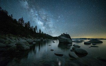 the sky, night, trees, water, stones, stars, coast, starry sky, the milky way