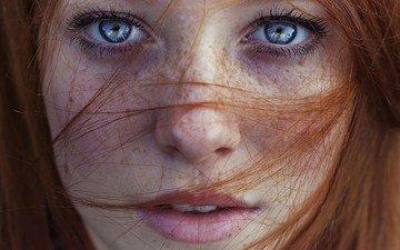 глаза, девушка, портрет, рыжая, модель, волосы, губы, лицо, веснушки