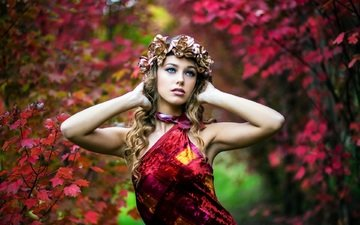 leaves, girl, dress, look, autumn, makeup, wreath, blur, alessia