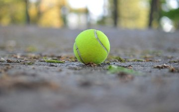 macro, the ball, tennis, tennis ball