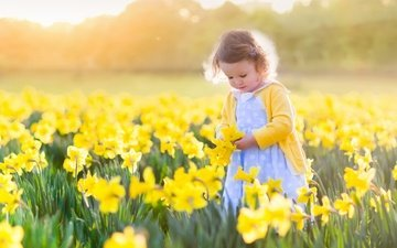 flowers, the sun, field, girl, child, daffodils