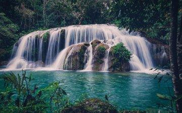 river, nature, forest, waterfall, stijn van der biest