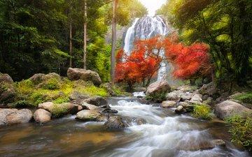 река, природа, лес, водопад, осень, поток, таиланд, patrick foto, канчанабури