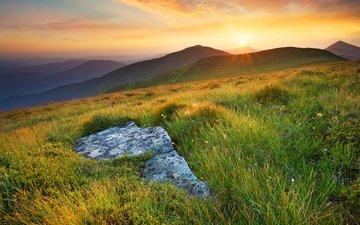 трава, солнце, холмы, природа, пейзаж, луга, biletskyi ievgenii