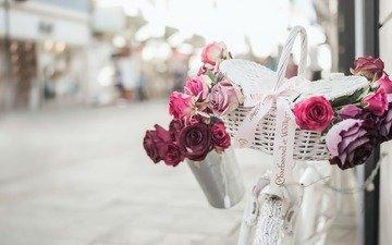 цветы, розы, улица, велосипед