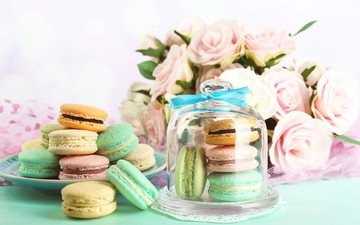 flowers, roses, sweets, bank, macaroon