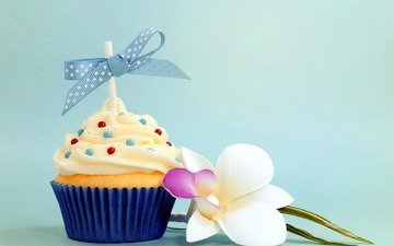 bow, cake, cupcake, flower, birthday