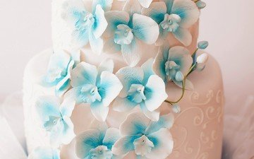 flowers, design, wedding, sweet, decoration, cake, orchids