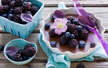 berries, blueberries, dishes, blackberry