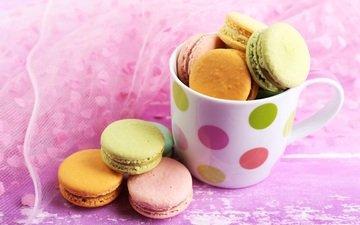 food, cup, sweet, cookies, macaron, macaroon