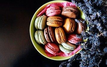 lavender, food, plate, cookies, macaron, macaroon