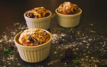 raspberry, berries, blueberries, cakes, dessert, cupcakes